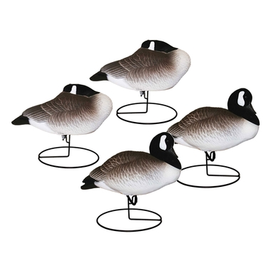 Full Body Canada Geese: Resting 4 Pack